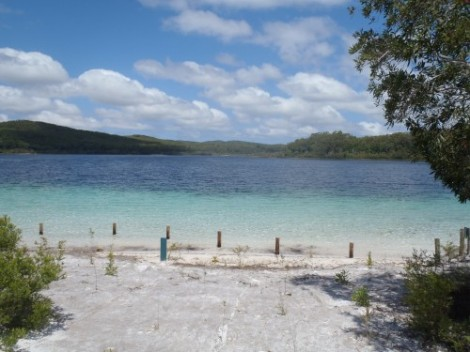 The gorgeous Lake McKenzie