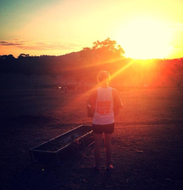 Good Life Farm Sunset
