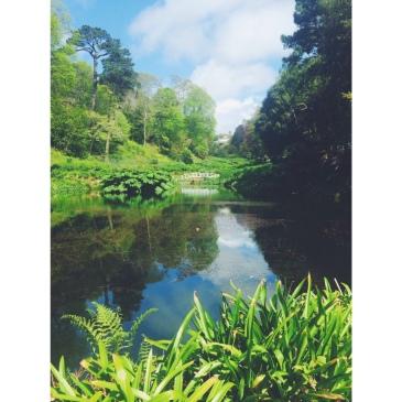 Cornwall Trebah Gardens