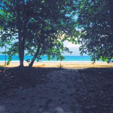 Beach Life, Puerto Viejo, Costa Rica