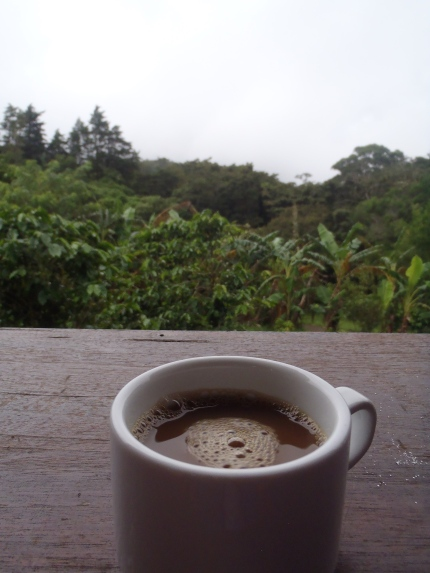Don Juan Coffee Tour