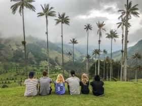 Cocora Valley, Colombia
